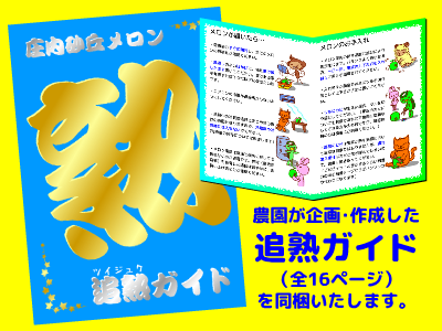 小林直太郎農園|挿絵入りで分かりやすい小冊子です。トラブル対処法やオススメレシピも掲載!